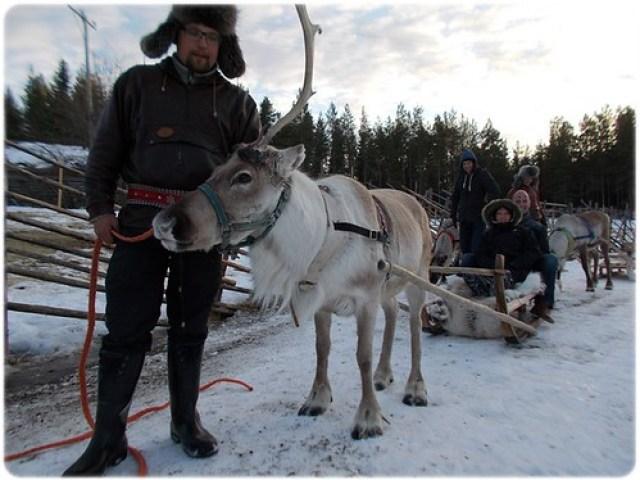 Rovaniemi (15)