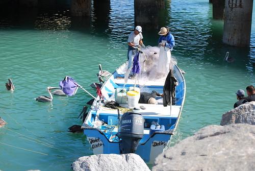 Shrimp fishermen