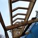 Walkway roof - Brockwood Park School Pavilions Project