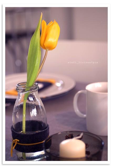 tulip_grey+yellow