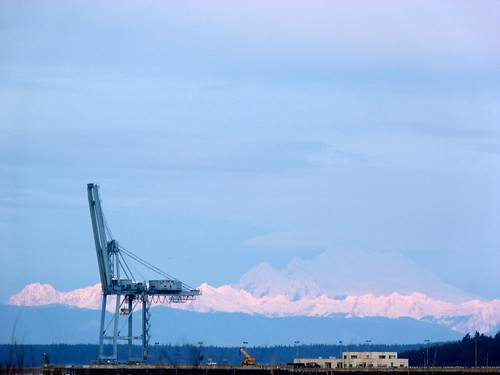 still life with crane and mount baker foothills