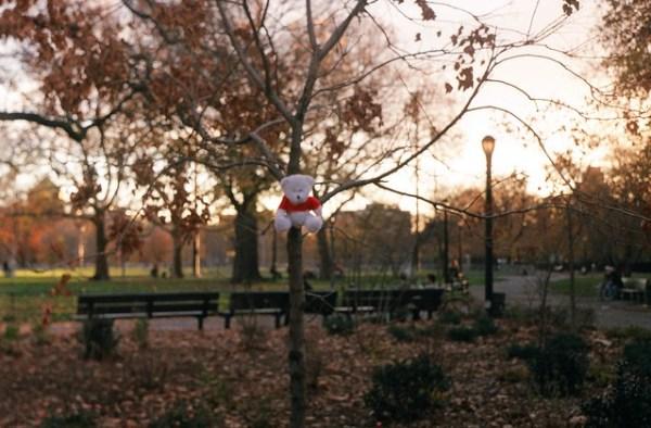 McCarren Park, Greenpoint