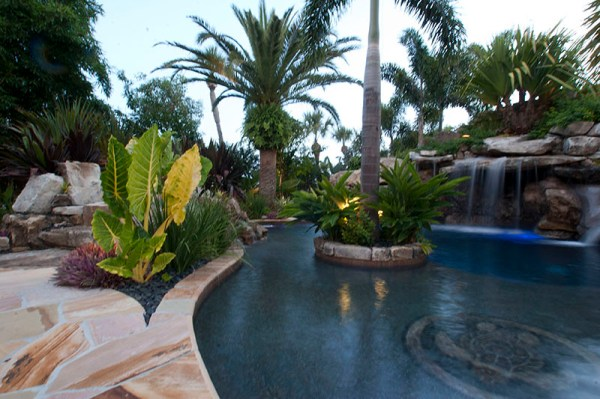 landscaping-swimming-pool-tropical-plants-sarasota-bradenton-florida-2