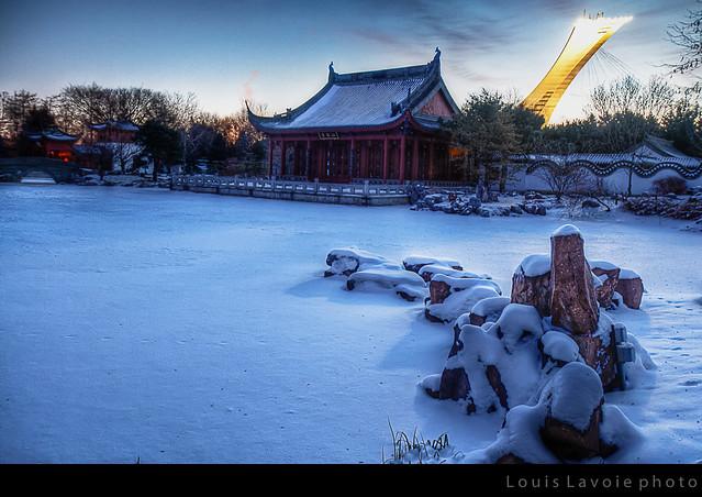 Étang - Jardin chinois