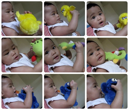 Ashya with Big Bird, Hippo, & Cookie Monster