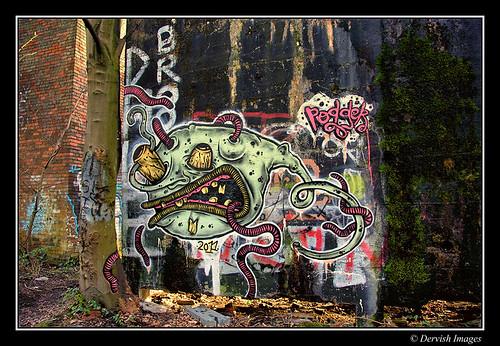 Derelict In The Woods - Graffiti