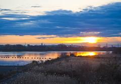 Sunrise at Arakawa