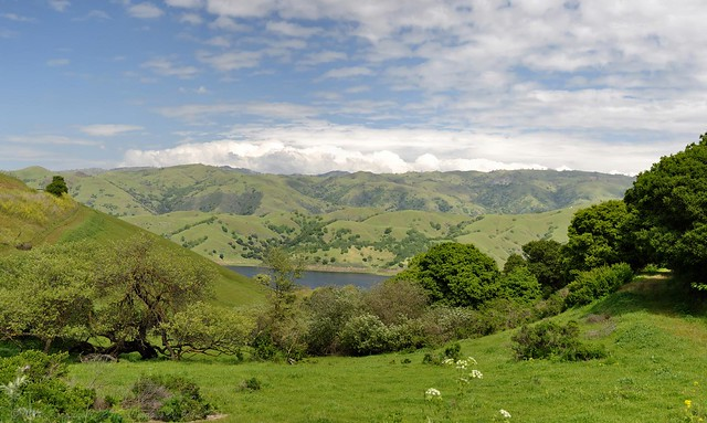Calaveras Reservoir in the Spring