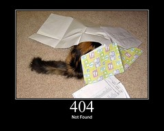 404 LOLCAT NOT FOUND by GirlieMac on Flickr, CC BY 2.0