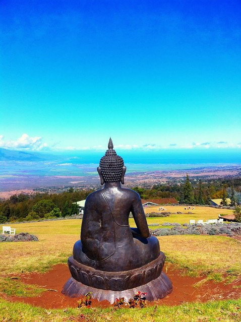 The Buddha meditating at the Lavender Farm in Maui