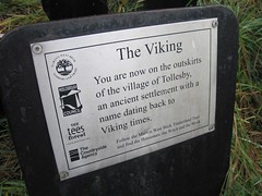 Viking, Marton West Beck