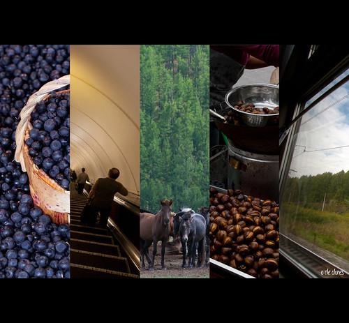 Collages fotos Transiberiano