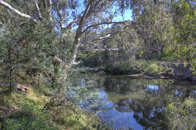 Brimbank Park Maribyrnong River 2012-02-24 (_MG_3260_1_2)