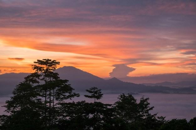 Sunrise. Danum Valley