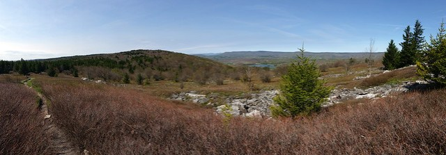 20160508_Dolly Sods_003