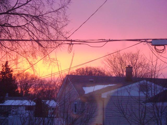 Silent Sunday, February 20, 2012