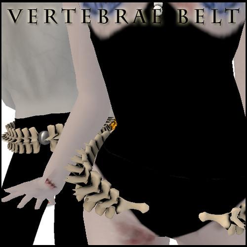 vertebraeBelt