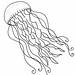jellyfish line