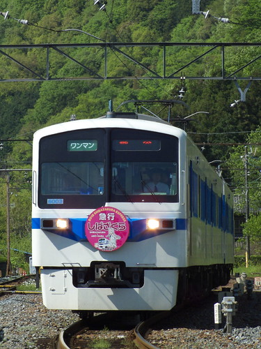 6003F(芝桜×あの花HM) @寄居〜波久礼