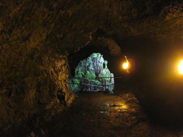 Picture from Thurston Lava Tube
