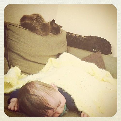 219: naptime.