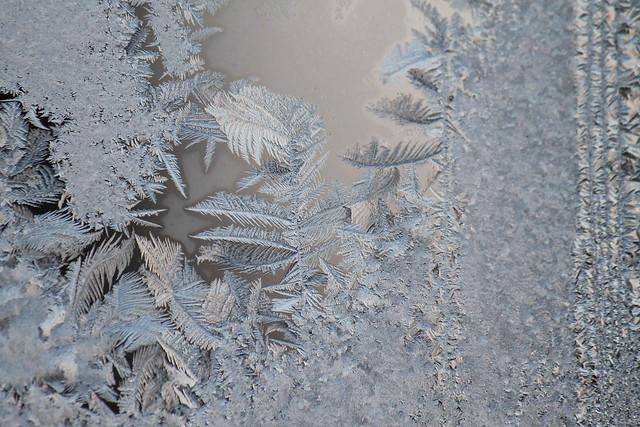 Project 52 2012 #6: Flocons de givre à la fenêtre