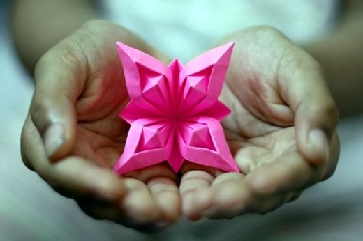 Riccardo's Flower