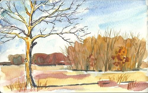 20120218_yellow_trail