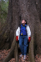 Sue Enthralled by the Cherrybark Oak