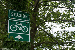 Seaside Bike Path (By Peter Wilson, used with permission)