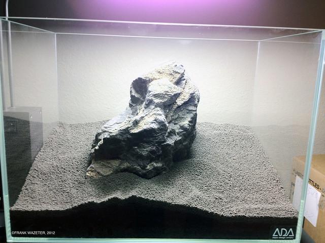 iwagumi main stone first