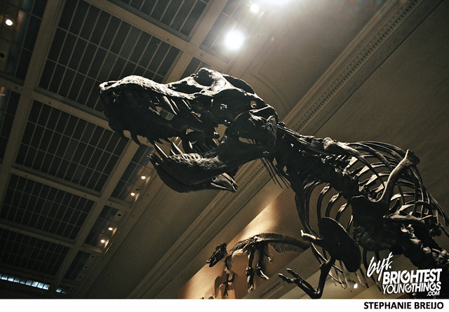 Smithsonian Dinosaur Exhibit Photos Brightest Young Things Stephanie Breijo5