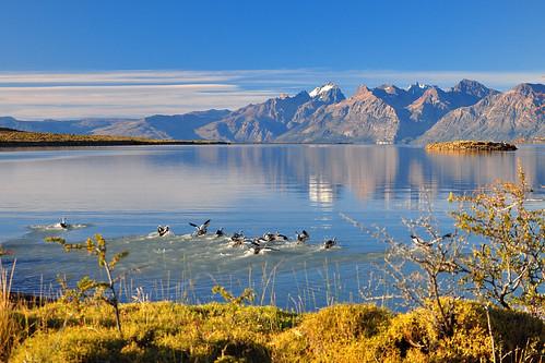 Lago Viedma 1 -El Chalten (Argentina)