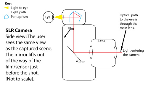 Diagram: Side View of an SLR camera showing the optical path to the eye.