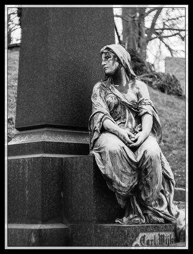 67/366 - The widow by Flubie