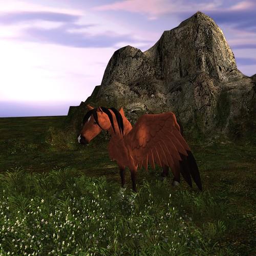 Hoof it - Pegasus