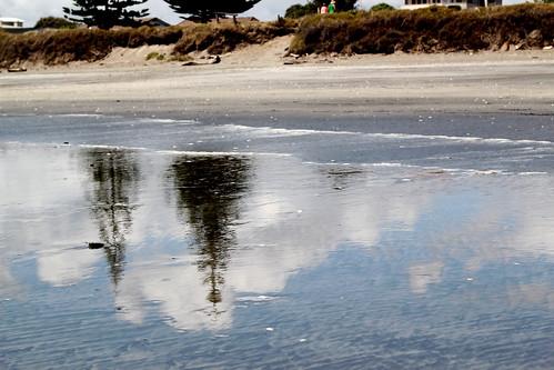 Beach-y Pines