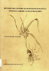 Revision del genero Allium_Página_001