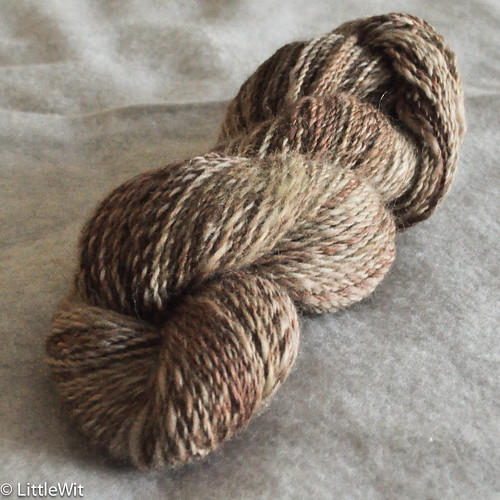 Miss Babs - Acorn Mixed BFL