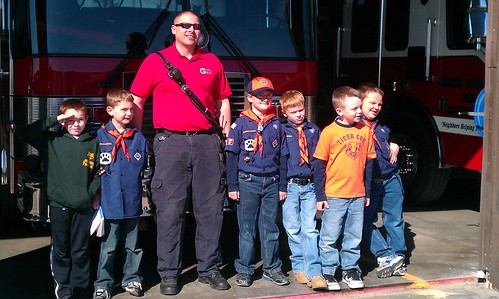070/366 [2012] - Fire Station With Tiger Cubs by TM2TS