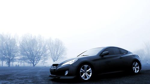 Genesis in the Fog