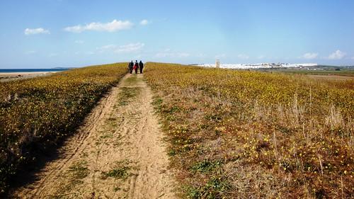 Vejer de la Frontera - Conil 2012