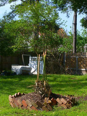 Key hole garden by melhardy