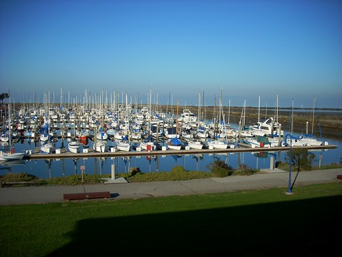 Cruise Ins Amp Visitor Dock Coyote Point Yacht Club