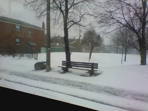 Winter, 11 February 2012
