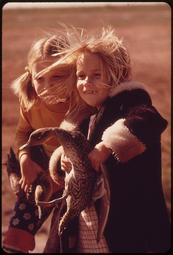 Second grade school girls from Calipatria clutch pintail ducks. They are studying banding and migration at the Salton Sea National Wildlife Refuge, March 1973