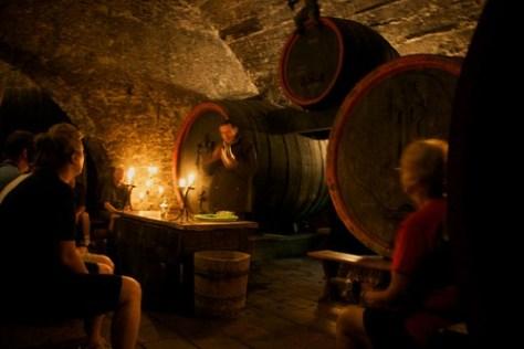 Wine tasting in M?ln�k