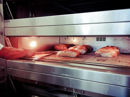 Brasserie Bread Art of Sourdough