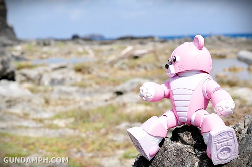 Pink Bearguy at White Rock Formation - Kapurpurawan Beach