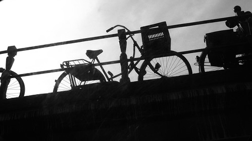 Bikes from the canal
